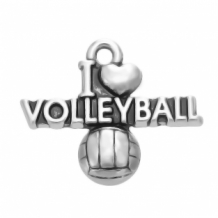 i love volleyball bedel